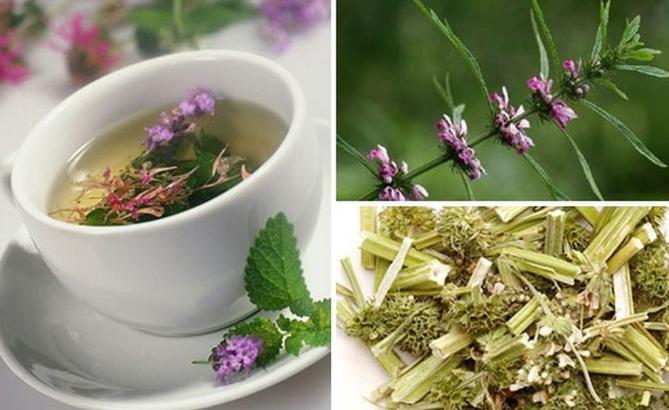 Sử dụng thảo dược thiên nhiên